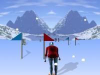 Descente de Ski