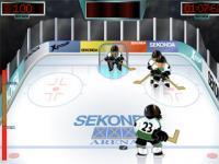 Tir au hockey